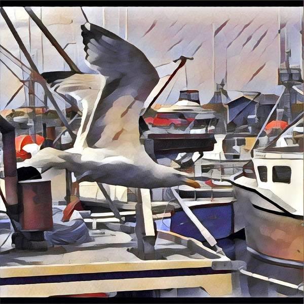 Photograph - Gull by David Matthews