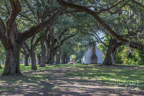 Photograph - Gullah Heritage by Dale Powell