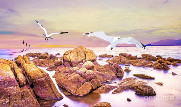 Seabirds Wall Art - Photograph - Gulls Glide by Laura D Young