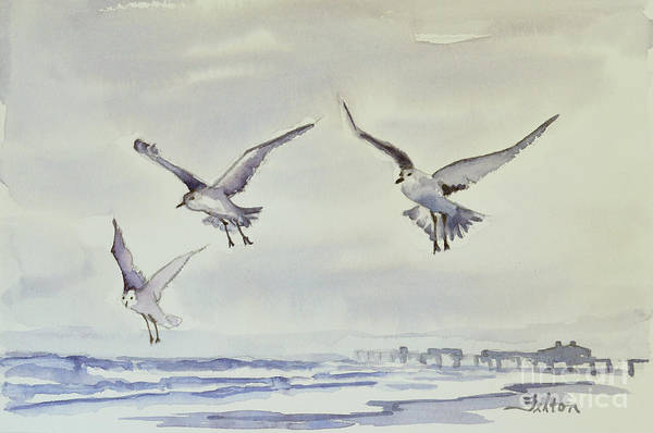 Painting - Gulls In The Fog by Julianne Felton