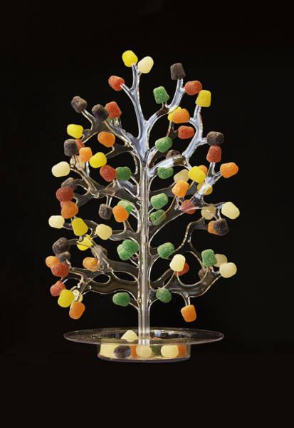 Photograph - Gumdrop Tree by Jim Dollar