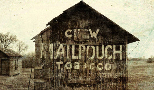 Mixed Media - Grunge Mail Pouch Tobacco Barn by Dan Sproul