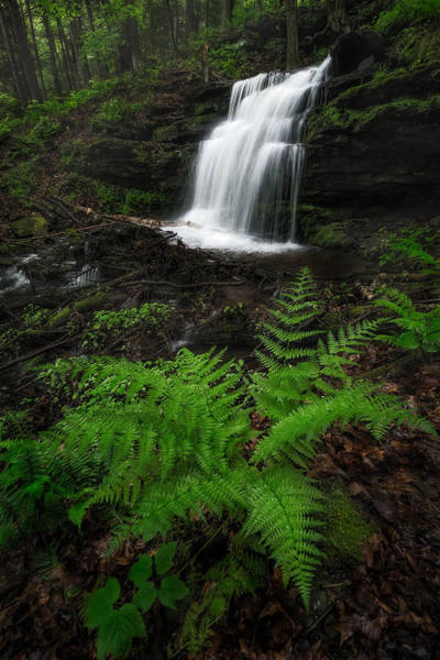Sunderland Wall Art - Photograph - Gunn Brook Falls by Jeff Bazinet