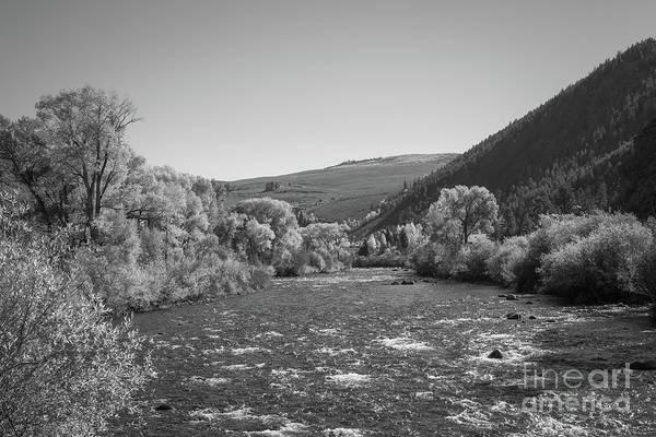 Photograph - Gunnison River In Autumn Bw by Michael Ver Sprill