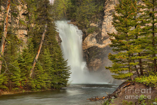 Photograph - Gushing In The Spring At Trick Falls by Adam Jewell