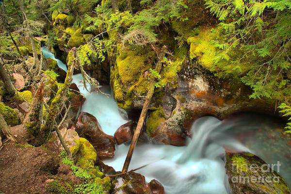 Photograph - Gushing Through A Red Rock Canyon by Adam Jewell