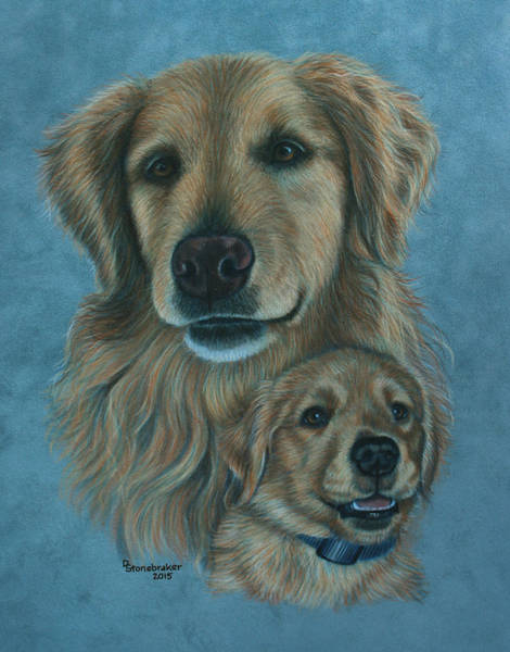 Wall Art - Drawing - Gussy Before And After by Debbie Stonebraker
