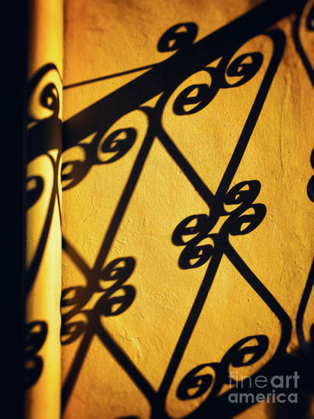 Photograph - Gutter And Ornate Shadows by Silvia Ganora