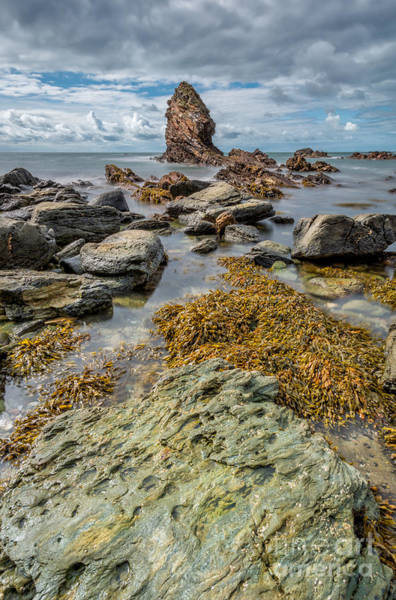 Sea Stacks Wall Art - Photograph - Gwenfaens Rock by Adrian Evans