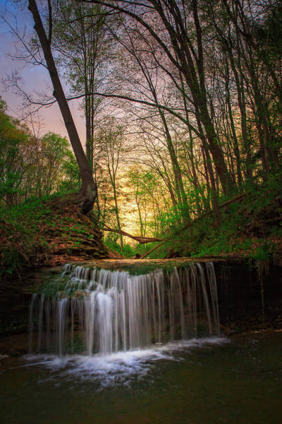 Raccoon Photograph - Gypsy Glen  Rd Waterfall  by Emmanuel Panagiotakis