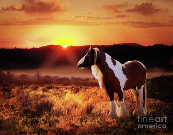 Digital Art - Gypsy Sunset by Melinda Hughes-Berland