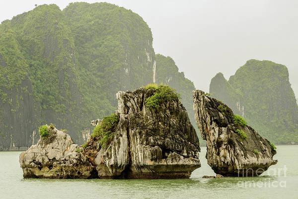Photograph - Ha Long Bay 2 by Werner Padarin