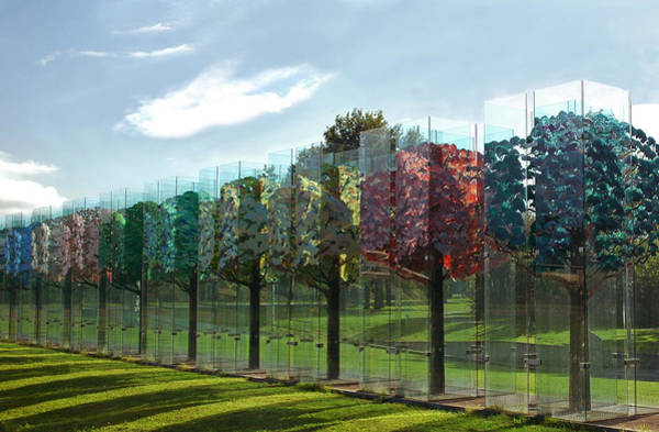 Photograph - Haaksbergen's The Glass Forest by Ginger Wakem