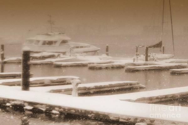 Photograph - Habor Snowynight by Ania M Milo