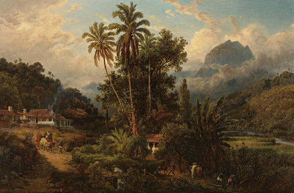 Hacienda De San Esteban De Puerto Cabello, Venezuela Art Print