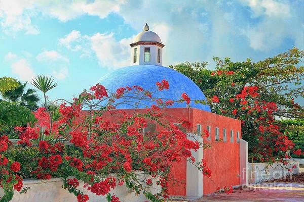 Photograph - Hacienda Dona Isabel by Teresa Zieba