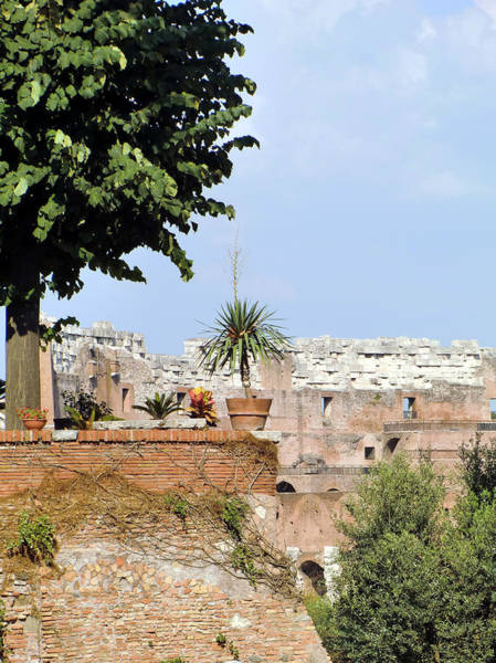 Wall Art - Photograph - Hadrian Landscape by Mindy Newman