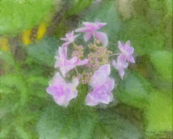 Painting - Hadsbury Hydrangea Mixed Media by Bill McEntee