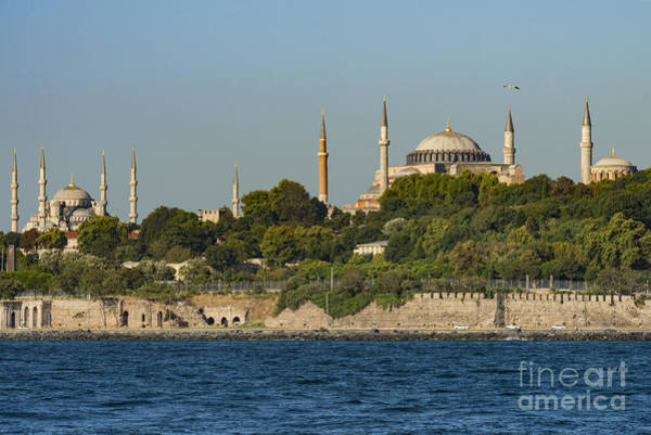 Sultan Ahmet Camii Wall Art - Photograph - Hagia Sophia And Blue Mosque by Bob Phillips