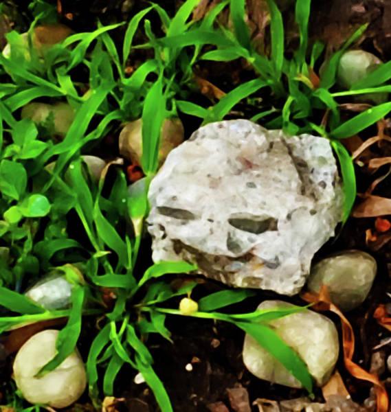 Photograph - Haight Ashbury Smiling Rock by Gina O'Brien