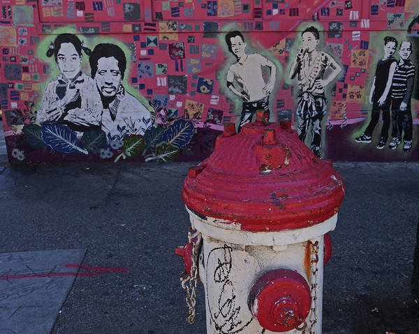 Photograph - Haight Street Fire Hydrant San Francisco by Toby McGuire