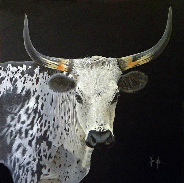 Longhorn Painting - Hair And Horns Composition In Black And White by Gaylon Dingler
