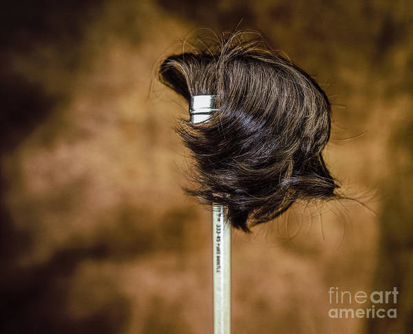 Photograph - Hairbrush by Hans Janssen