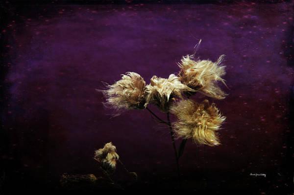 Photograph - Hairy Little Trolls by Randi Grace Nilsberg