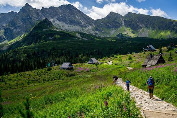 High Tatras Wall Art - Photograph - Hala Gasienicowa by Pati Photography