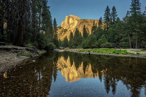Photograph - Half Dome From  The Merced by Peter Tellone