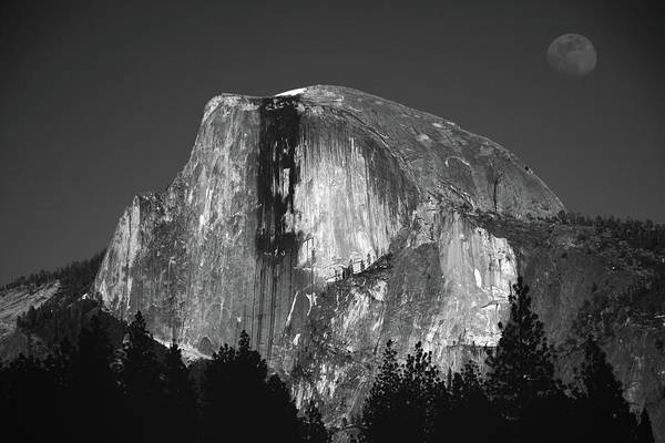 Photograph - Half Dome Moonrise by Raymond Salani III
