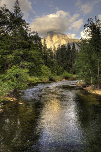 Photograph - Half Dome Reflection by Harold Rau