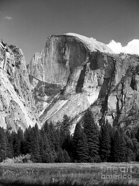 Photograph - Half Dome by Ron Sadlier