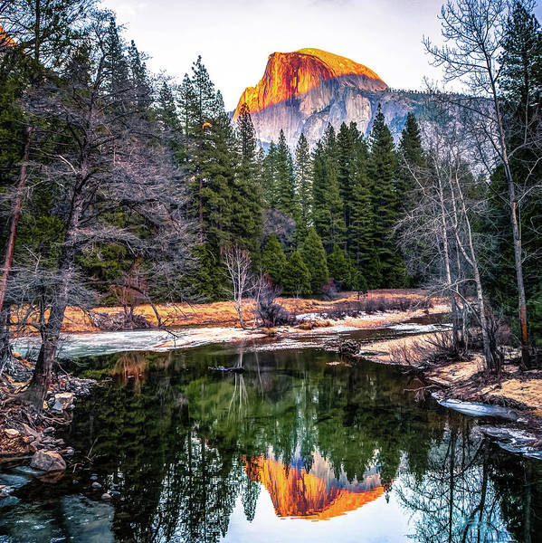 Photograph - Half Dome Sunset Reflection - Square - Yosemite by Gregory Ballos