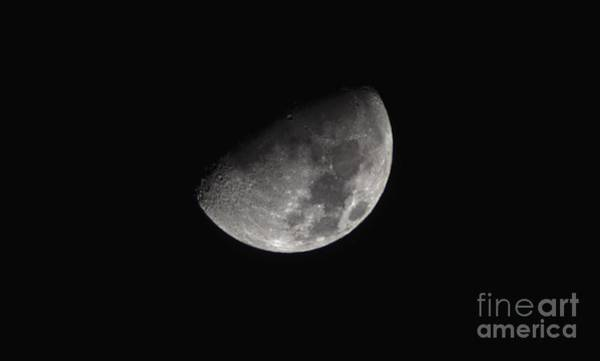 Photograph - Half Moon In The Distance by Christopher Shellhammer