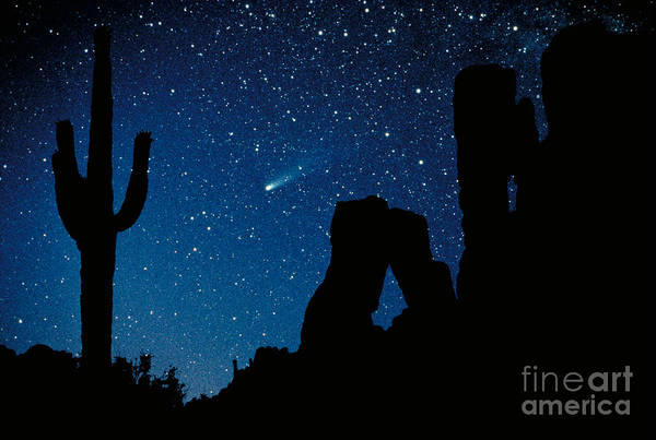 Deserts Photograph - Halley's Comet by Frank Zullo
