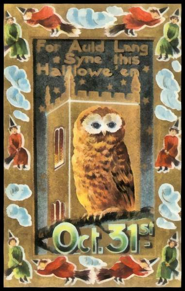 Photograph - Halloween Owl October 31st by Unkown