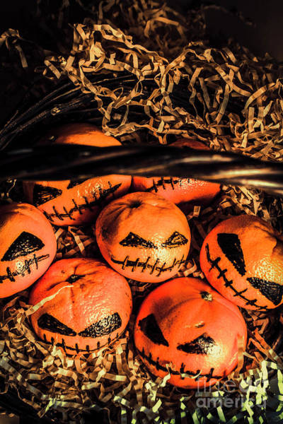 Decorating Photograph - Halloween Pumpkin Head Gathering by Jorgo Photography - Wall Art Gallery
