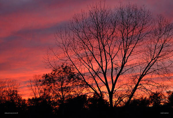 Photograph - Halloween Sunset by Frank Mari
