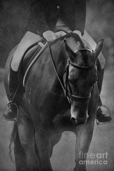 Dressage Wall Art - Photograph - Halt Black And White by Michelle Wrighton