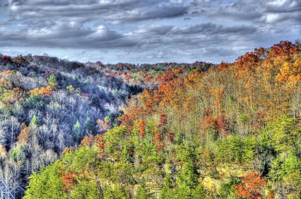 Photograph - Halved Forest by Sam Davis Johnson