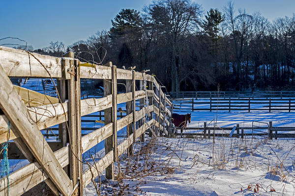 Photograph - Hamilton Ma Equestrian Farm Blanket Of Winter Snow Fence by Toby McGuire