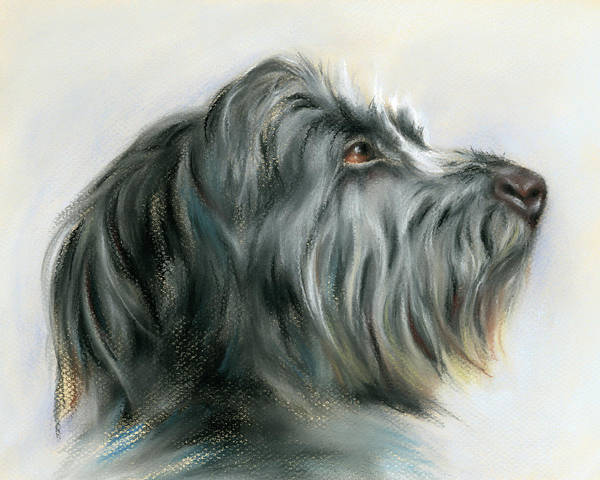 Wall Art - Pastel - Hamish The Wolfhound by MM Anderson