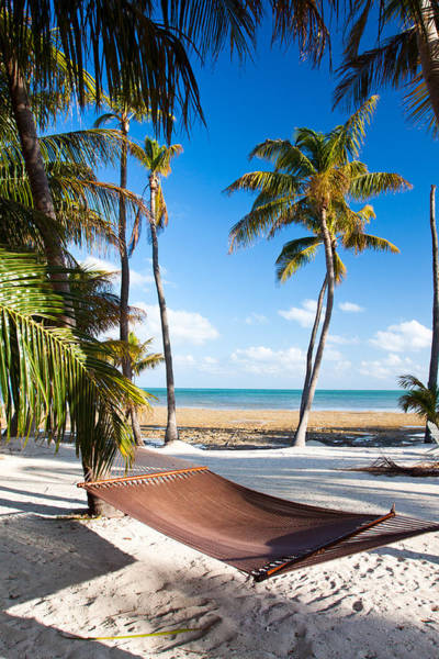 Photograph - Hammock In Paradise by Adam Pender