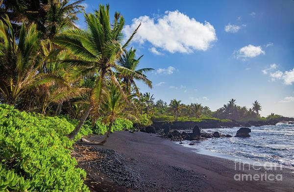 Photograph - Hana Bay Palms by Inge Johnsson