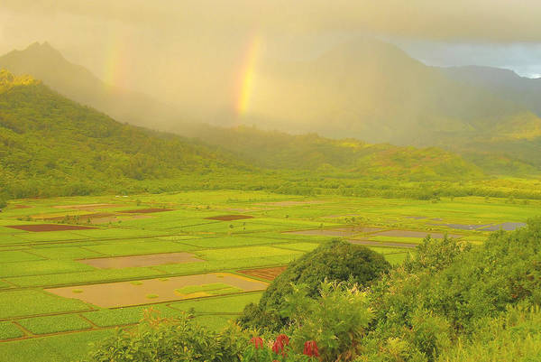 Wall Art - Photograph - Hanalei Valley Rainbows - Kauai by Stephen  Vecchiotti