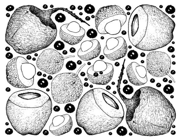 Coco Drawing - Hand Drawn Background Of Lychee And Coconut Fruits by Iam Nee