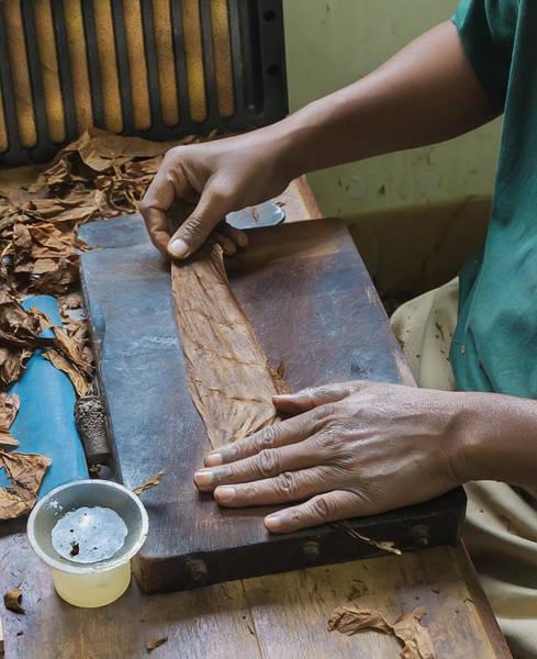 Photograph - Hand Making A Cigar by Gary Slawsky