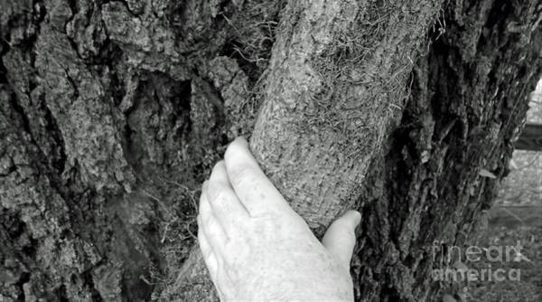 Photograph - Hand On The Vine by D Hackett