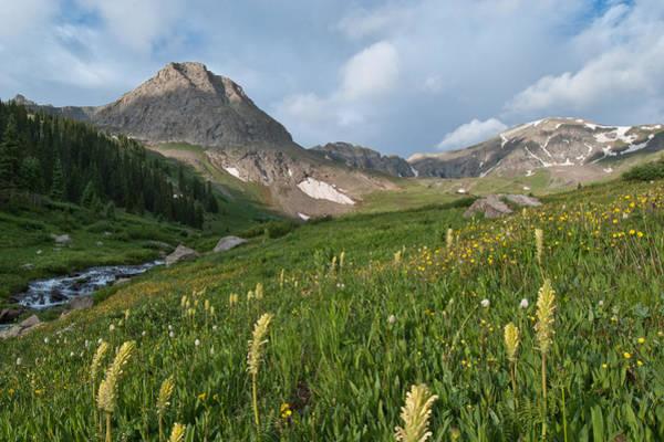 Photograph - Handie's Peak Summer Landscape by Cascade Colors